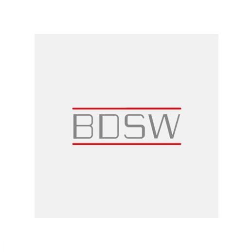 BDSW Fachausschuss Technik wählt neue stellvertretende Vorsitzende